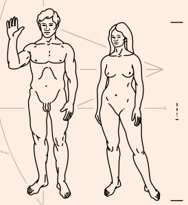 1024px-pioneer_plaque_humans-svg